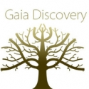 Gaia Discovery features THF