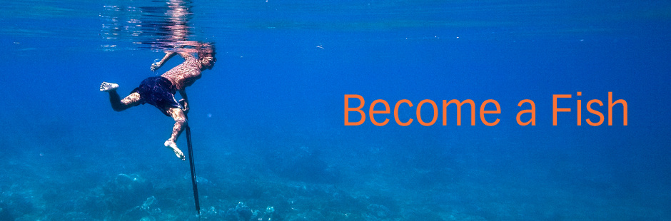 BecomeaFish02